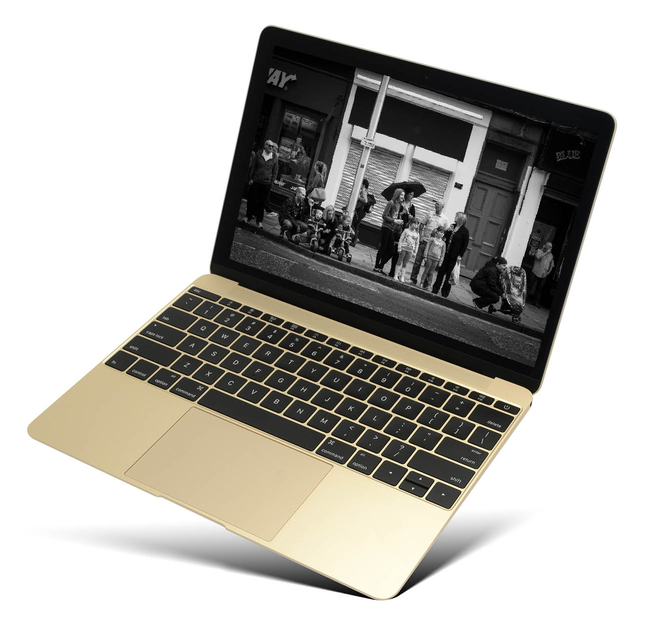 Really Real Resources disability stock photography library laptop 1
